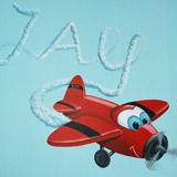 vliegtuigje met naam